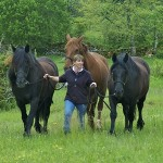 Tanya, with three of the horses